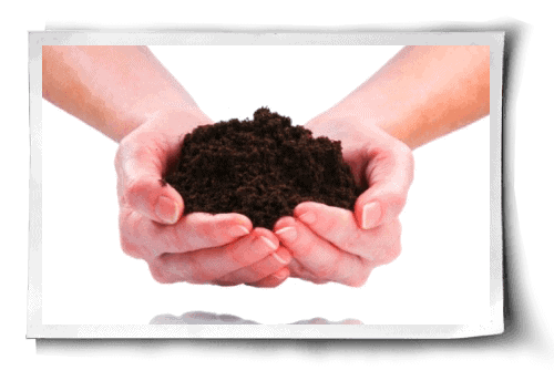 What's Hiding in Your Organic Fertilizer? post image
