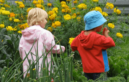 Garden Fun with Little Ones post image
